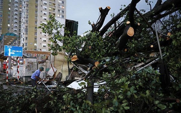 epa07804713 A man cleans up next to a fallen tree that was blown over by tropical storm Podul, in Hanoi, Vietnam, 30 August 2019. Podul is the fourth storm to hit Vietnam this year. The storm has weakened into a depression after hitting north-central Vietnam, bringing heavy rains and landfall in some provinces.  EPA-EFE/MINH HOANG